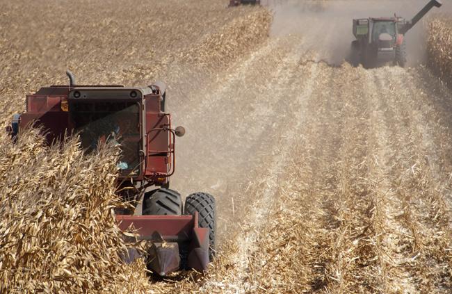 maize-combine